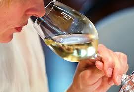 profumi del vino
