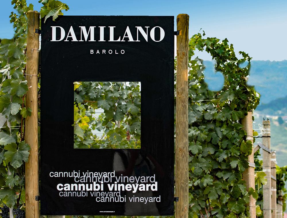 Barolo Cannubi e Barolo Riserva Cannubi 1752 Damilano